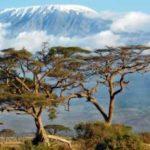 Свадебный тур, Туры в Танзанию